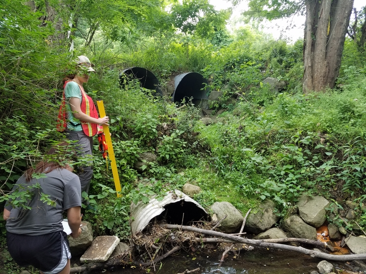 Culvert_assessments_Photo_by_S._Burke.jpg